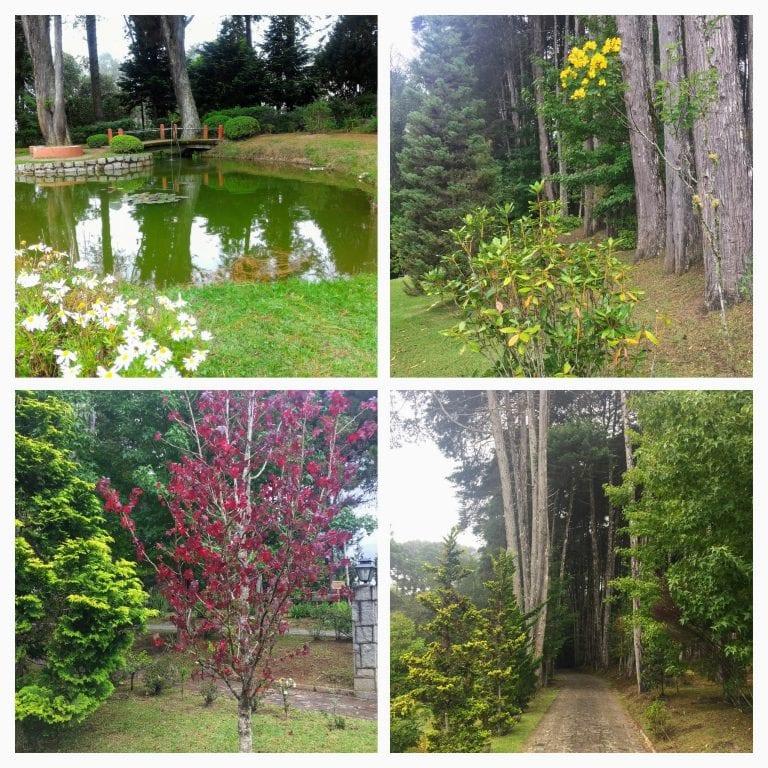 Área externa do Mosteiro de São João. Árvores, flores e lago muito bem cuidados.