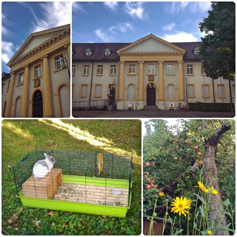 O que fazer em Kehl - Amtsgericht, casa com macieira carregada e um coelhinho