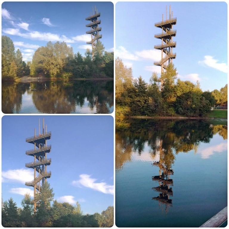 O que fazer em Kehl - Weißtannenturm, uma torre de observação