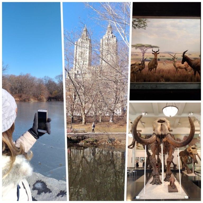 Central Park e Museu de História Natural