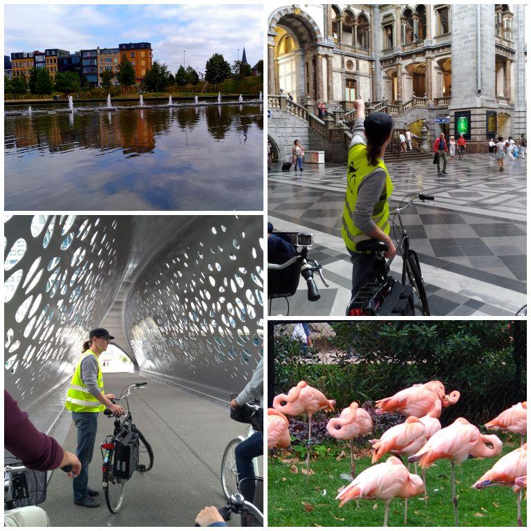 Highlights of Antwerp: city tour pela Antuérpia com a Antwerp by Bike
