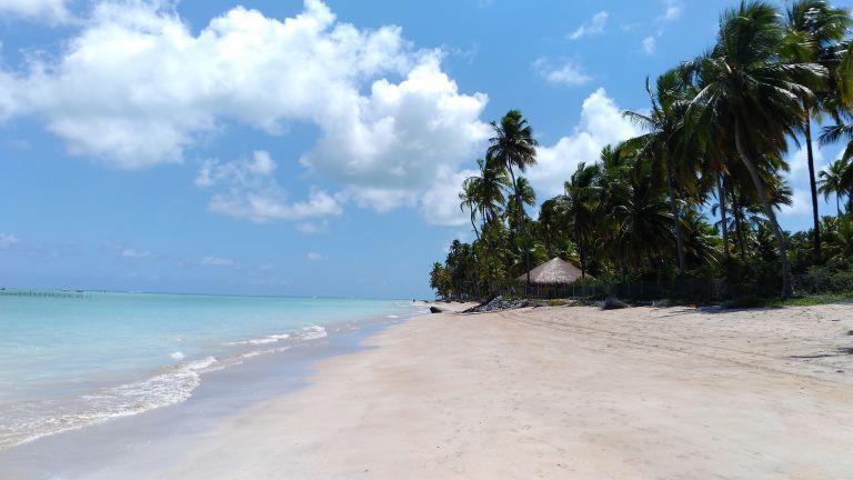 """Maragogi, o """"Caribe Brasileiro"""": areias claras, coqueiros e mar azul, calmo e de águas mornas"""