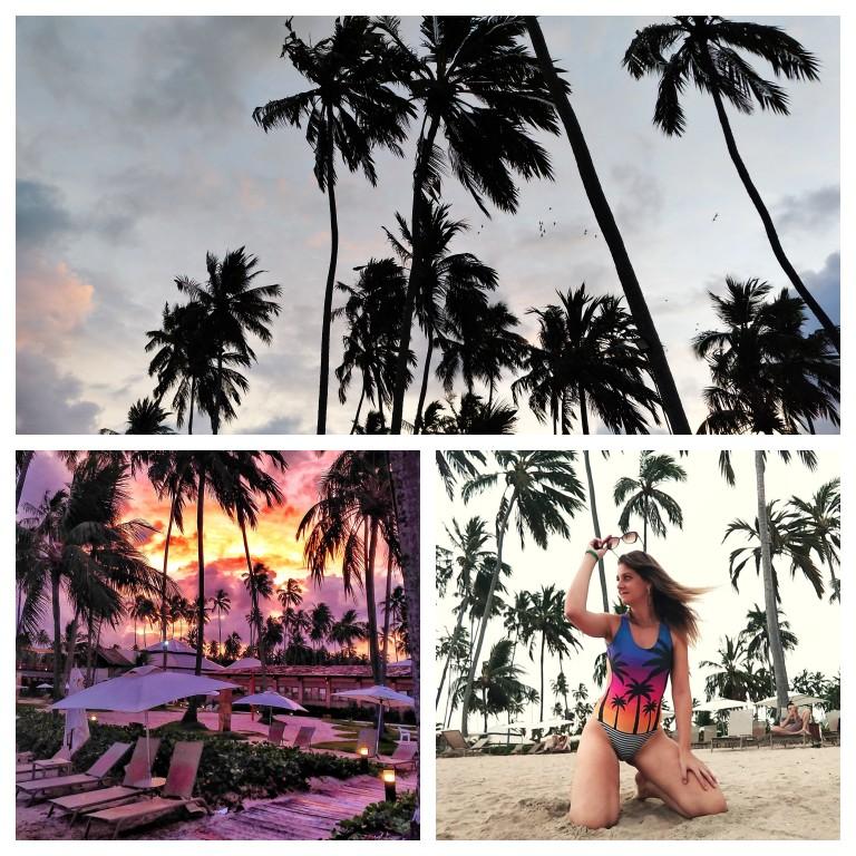 Maragogi: coqueiros e pôr do Sol espetacular