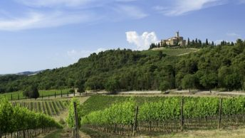 O que fazer na Toscana: degustação de vinhos no Castello Banfi