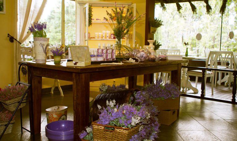 Le Jardin Jardins-Lavandas-Bistrô