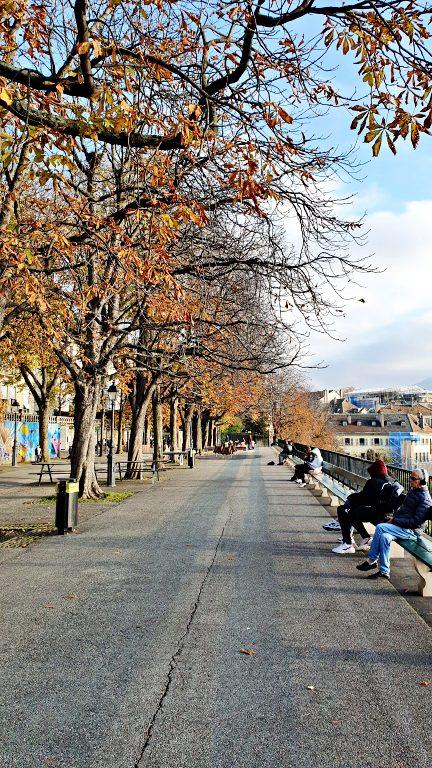 Promenade de la Treille | O que fazer em Genebra
