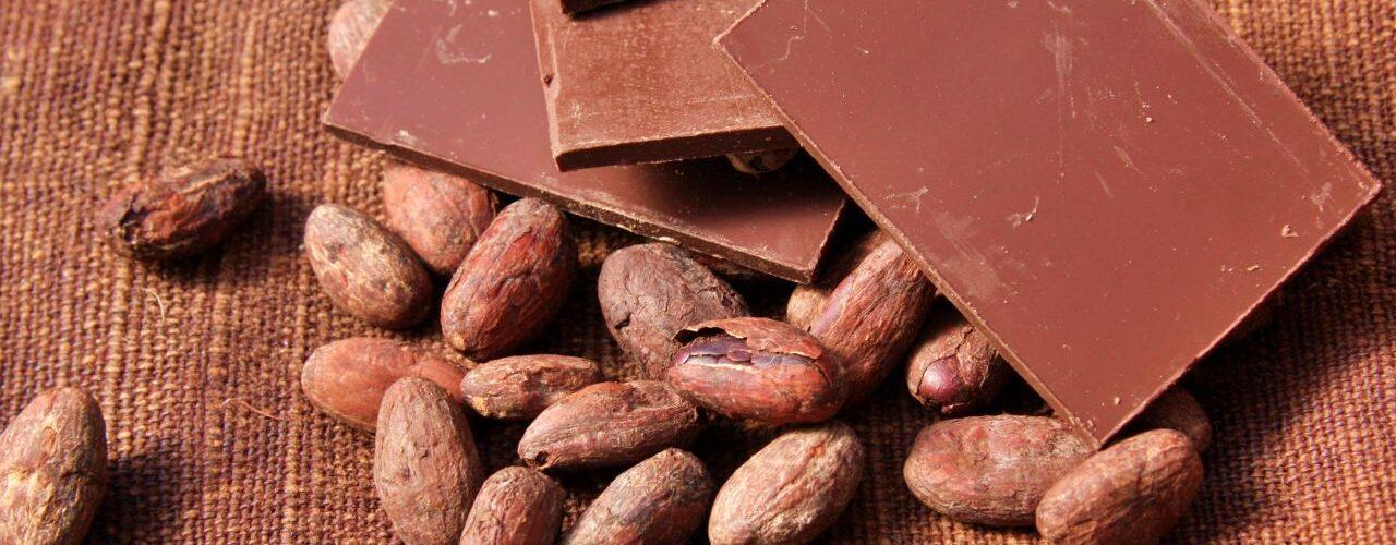 Chocolate Artesana no Brasil: 10 melhores marcas bean to bar