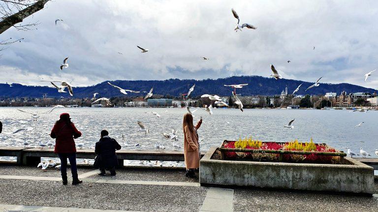 Zürichsee: Lago de Zurique | O que fazer em Zurique